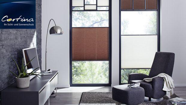 Plissee Sicht- und Sonnenschutz